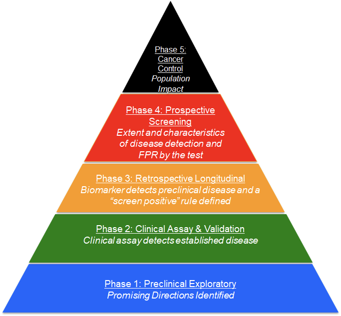 Five phases of biomarker development depicted as a pyramid with a wide foundation for phase 1 at the bottom and a tiny triangle at the top for phase 5, with phases 2–4 (inclusive) betwixt.